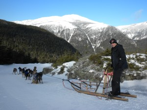 Views from dogsledding to the top of treeline on Mount Washington