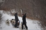 """Off for a """"crash course"""" in Dogsledding!"""