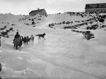 Dogsledding up Mount Washington